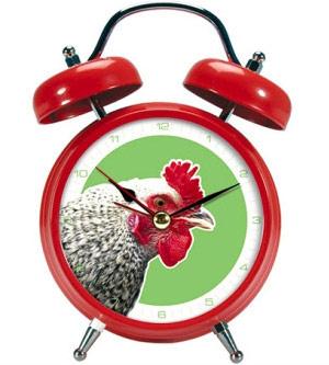 Alarm dari ayam jago.