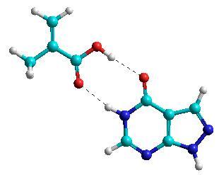 Interaksi antar molekul melalui ikatan hidrogen.