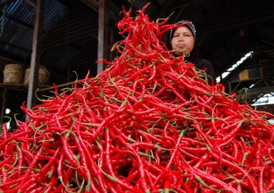 Tumpukan cabe merah siap jual.