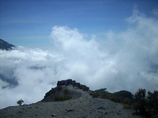 Kalau siang sunyi, tak ada angin yang berhembus kencang dari bawah bukit.