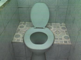 Toilet duduk yang bisa untuk orang jongkok...