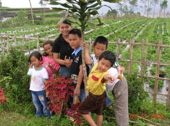 Kumpul di depan kebun strawberry.