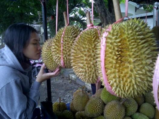Tali plastik untuk menggantung durian.