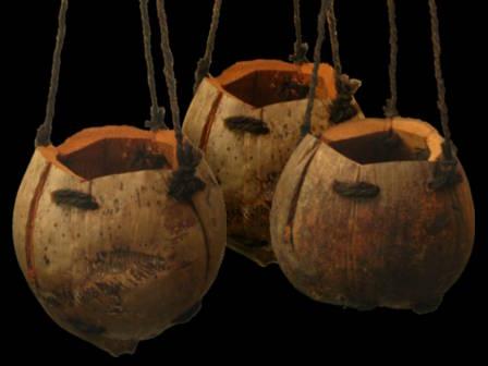 Pot gantung dari buah kelapa.