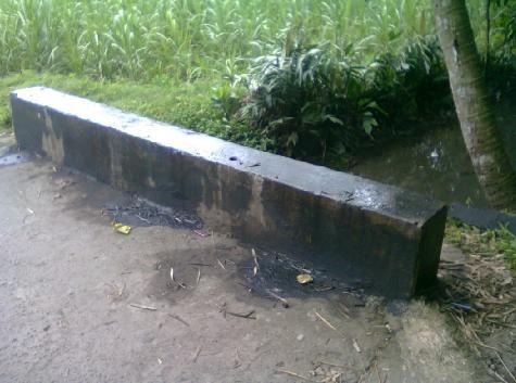 Jembatan kecil di tepi kampung.