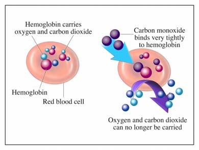 Mekanisme pengikatan CO pada hemoglobin dalam darah.